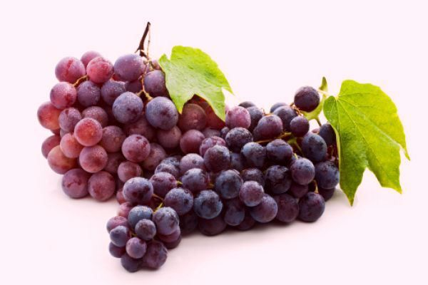 Red Grapes - An Important Fruit