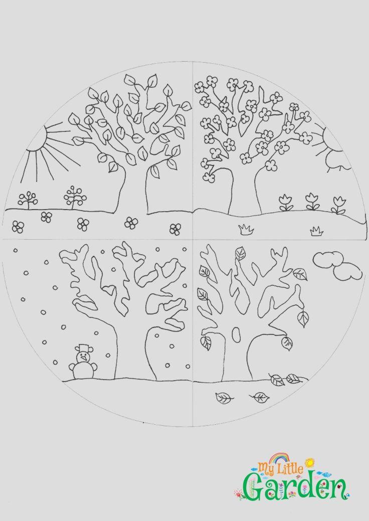 4 jahreszeiten kindergarten ausdrucken  pie chart chart