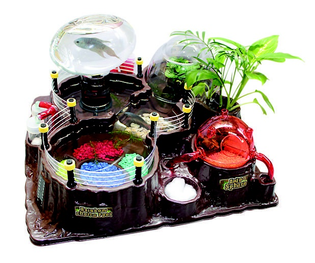 17 best images about science on pinterest worm farm for Toys for betta fish