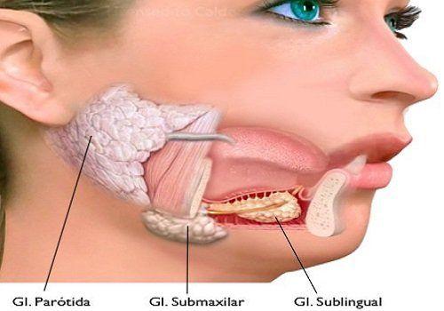 Esta prueba en glándula salival diagnostica Parkinson en etapa temprana