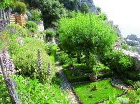 jardin médiéval à Sainte- Agnès  France: Photo
