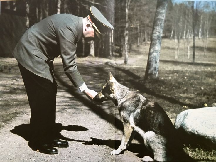 Photos of Hitler and His Dog