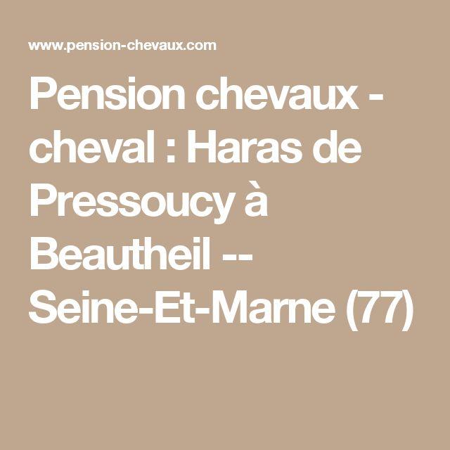 Pension chevaux - cheval : Haras de Pressoucy à Beautheil -- Seine-Et-Marne (77)