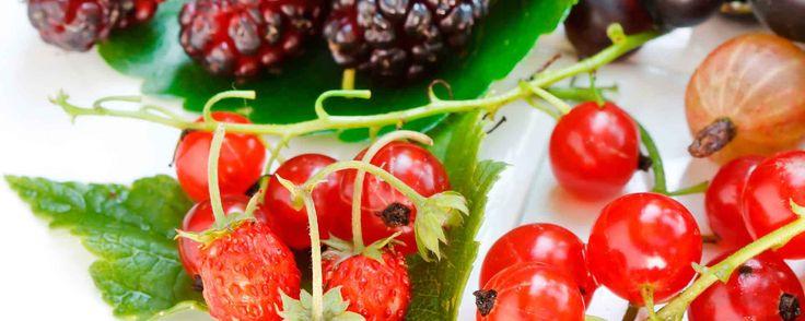 Festival de frutas vermelhas de Noyon, França
