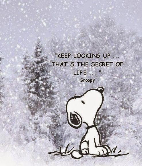 keep-looking-up-inspirational-quote