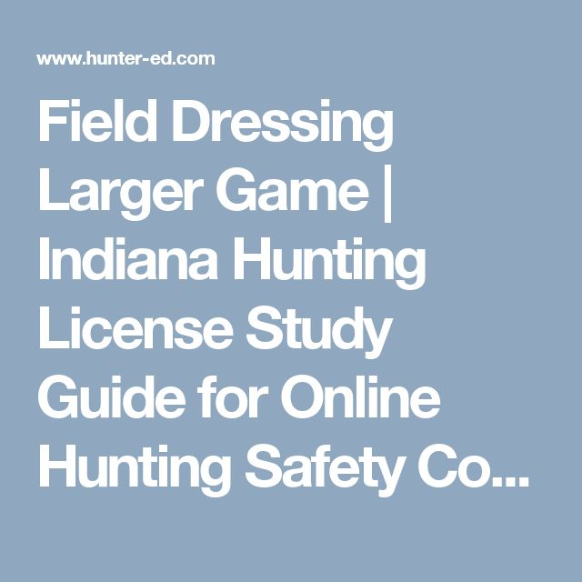 Field Dressing Larger Game | Indiana Hunting License Study Guide for Online Hunting Safety Course