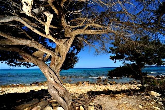 The beach at Porto Sosalinos Campsite, Sardinia, Italy