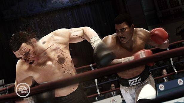 Fight nights!