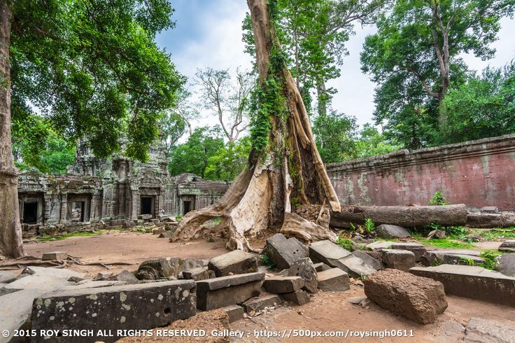Ta Phrom Temple is where they were shooting the movie Lara Croft: Tomb Raider (2001). Ta Prohm (prasat taprohm) is the modern name of the temple at Angkor, Siem Reap Province, Cambodia, built in the Bayon style largely in the late 12th and early 13th centuries and originally called Rajavihara. Located approximately one kilometer east of Angkor Thom (Bayon Temple) and on the southern edge of the East Baray, #SiemReap #Cambodia #Temples #TaPhrom