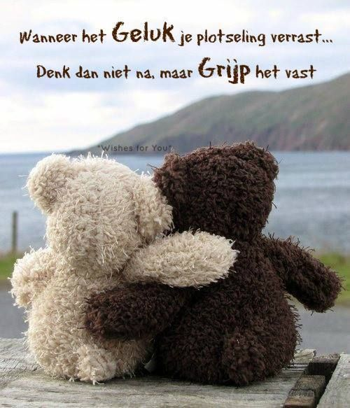 Citaten Geluk : Images about geluk on pinterest grateful for tes