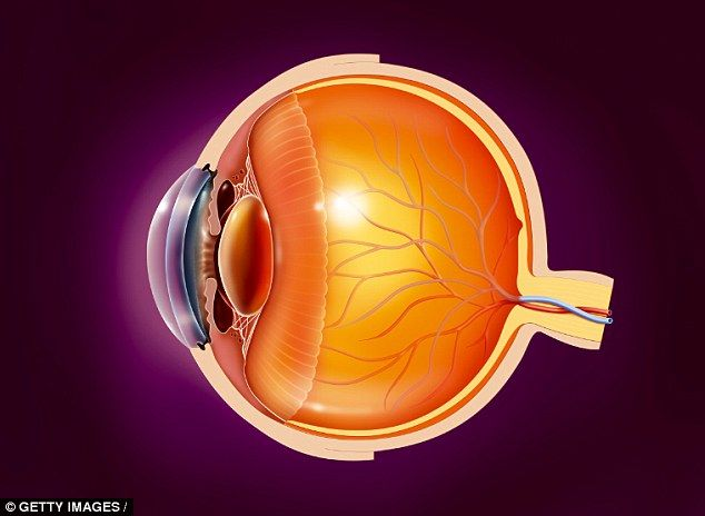 Hope for millions blinded by glaucoma: Staring at changing patterns of black lines 'helps damaged optic nerve to heal'