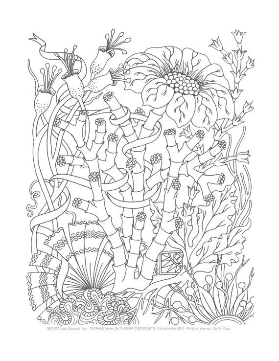 1642 best Flowers images on Pinterest | Print coloring pages, Adult ...