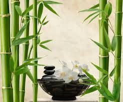 feng shui products - Google Search