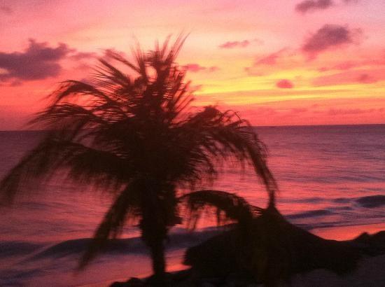 Aruba Beach Club: Sunset in Aruba