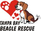 All beagles 8 years and older are only $50. Head to their website for pictures, events and more.