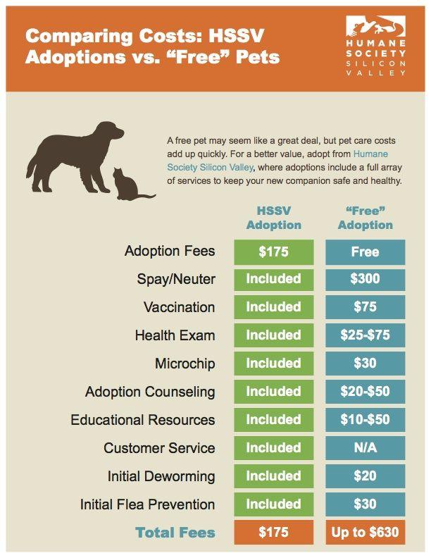 Dog Adoption Shopping List