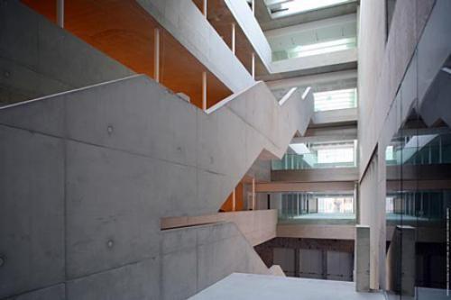 Grafton Architects | Virginia Duran