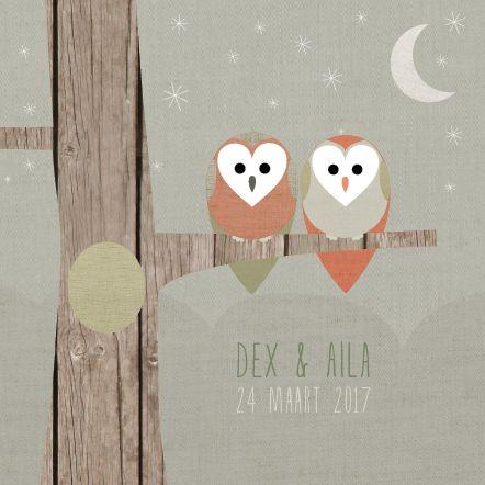 www.hetuilennestje.nl - Het Uilennestje geboortekaartjes tweeling Dex & Aila Tweeling, boom, uil, maan, sterren.