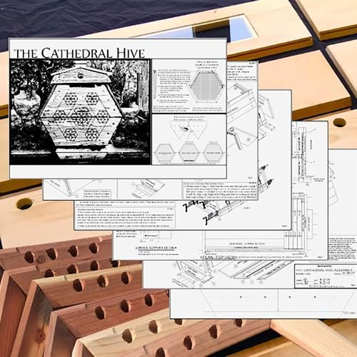 cathedral-hive-bee-hive-kit