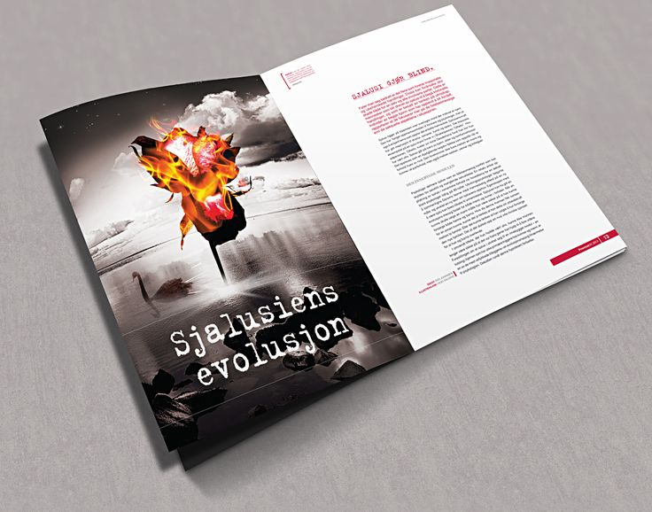 Editorial design - magazine spread