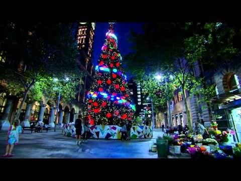 Martin Place Tree- Sydney, Australia  2014