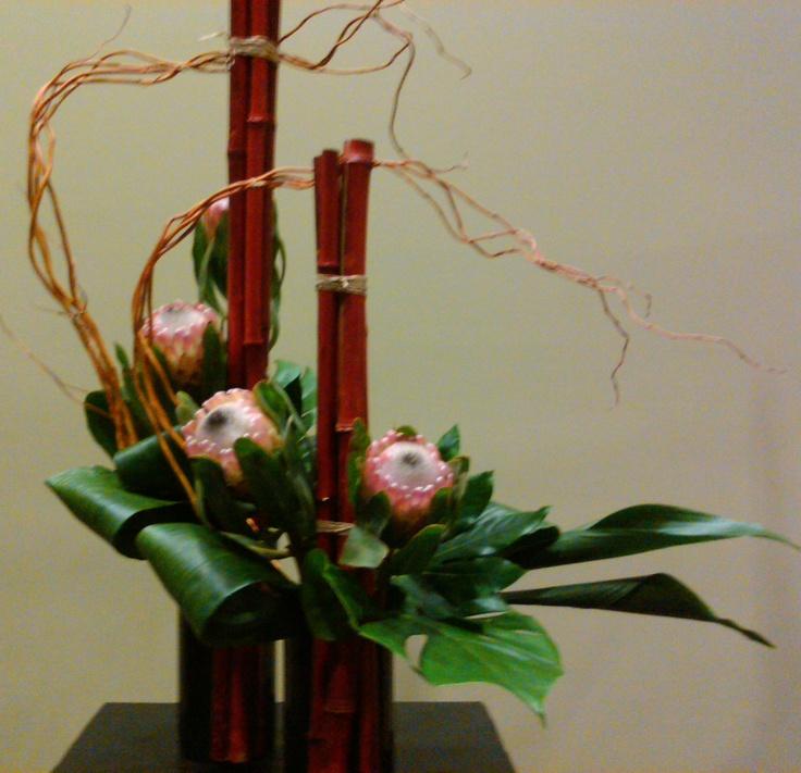 Protea, Bamboo, curly willow, aspidistra
