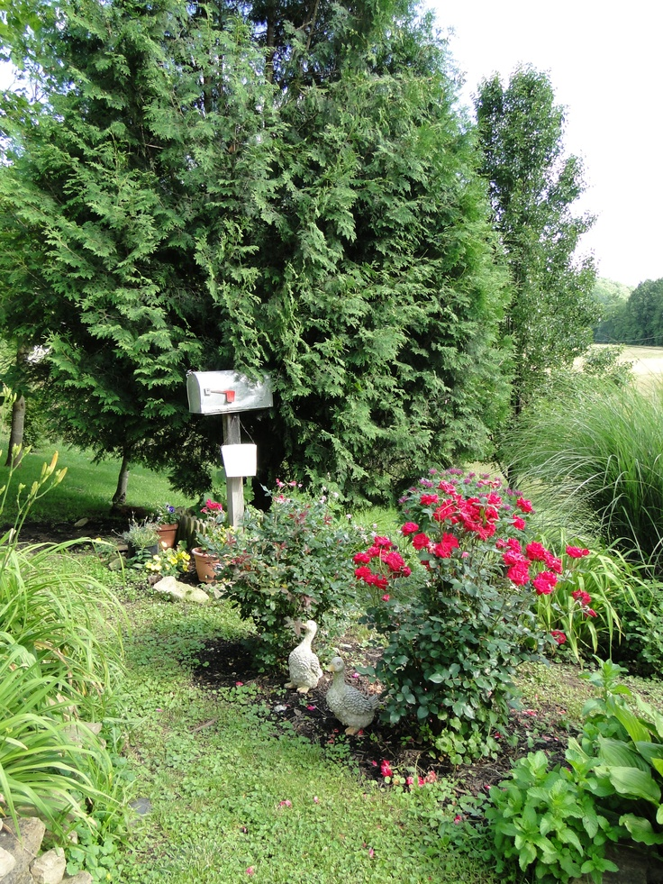 Kentucky Flower Garden. Old Mail Box Used To Store Gardening Tools.