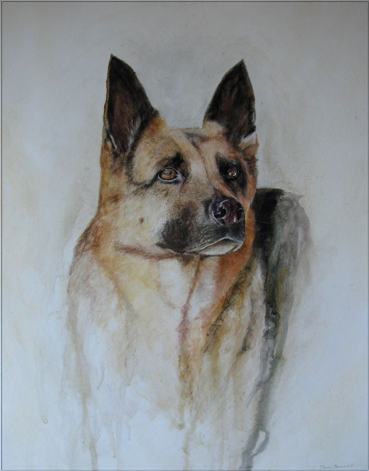 3'x4' original commissioned painting of a beautiful German Shepherd dog by Dennis Kalichuk