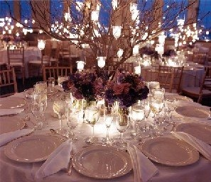 lights on tree branches at each table