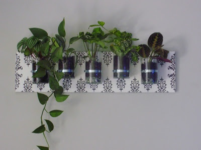 a wallmounted planter with clear jars saves space and can be used to connect with the earth mother as well as to represent nature spirits