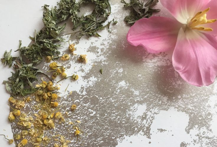 dreaming herbs winter Urban Moonshine