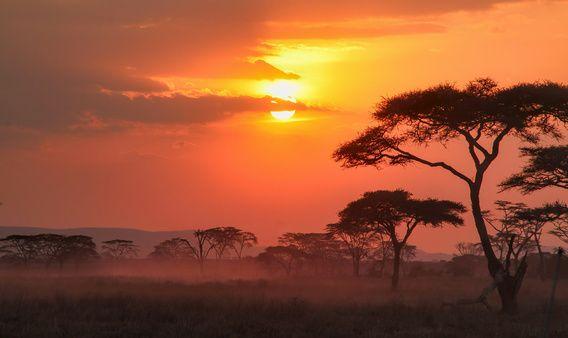 Afrikaanse Zonsondergang van Jacco van den Hoven