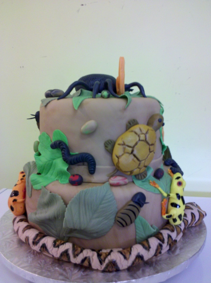 Creepy Crawly Cake -view 3 | Cakes! | Pinterest