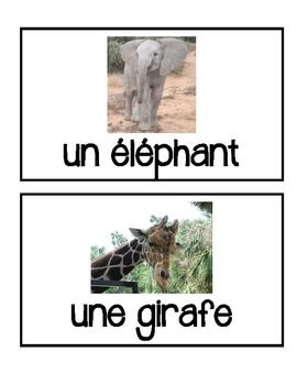 French Zoo Animals - Flashcards, Word wall words, BANG game cards