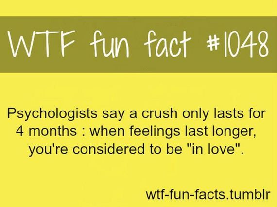 fun facts | WTF Fun Facts | Barnorama