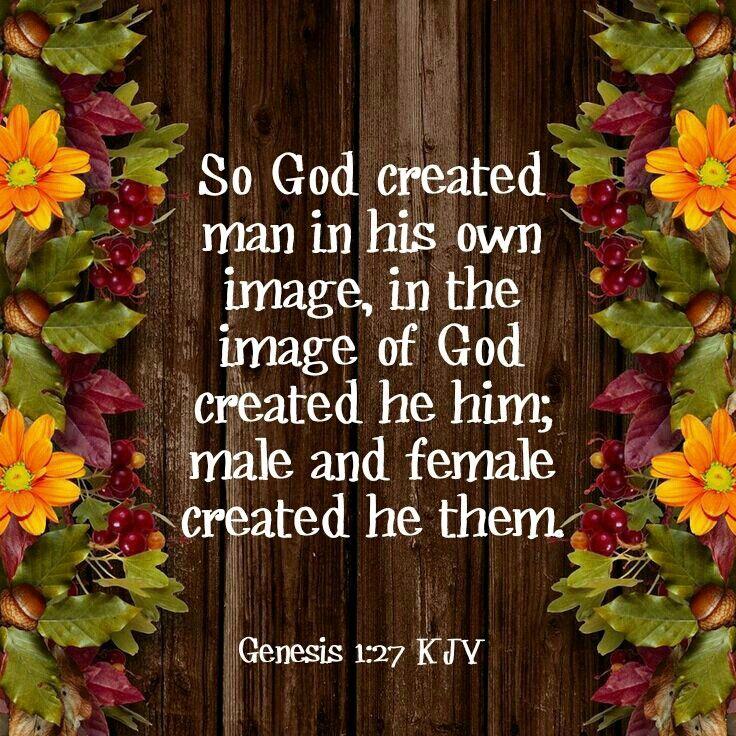Genesis 1:27 KJV