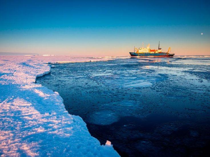 День 4-9. Южный Полярный Круг.  Эти основные дни экспидиции будут особенно насыщенными, мы будем наблюдать за колониями морских львов, жать лапу пингвинам, десантироваться на вечные льды Антарктиды, а также по морской традиции с шумом отметим пересечение нами Южного Полярного Круга.