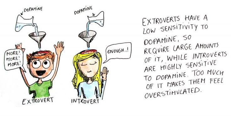 the brains explained - introverts vs. extroverts...  Introvert_9sensitivitytodopamine_zps33d33aa2.jpg