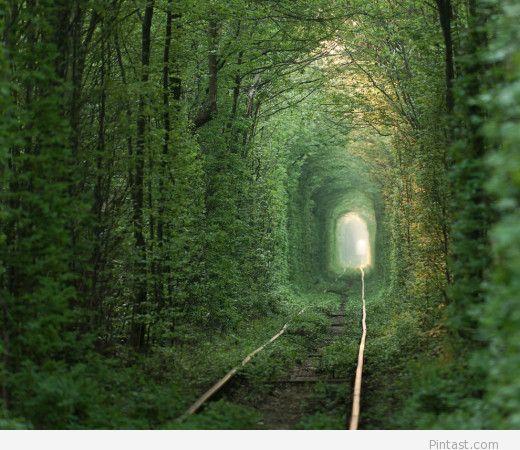 Tunel of Love, Romania – Valea Jiului