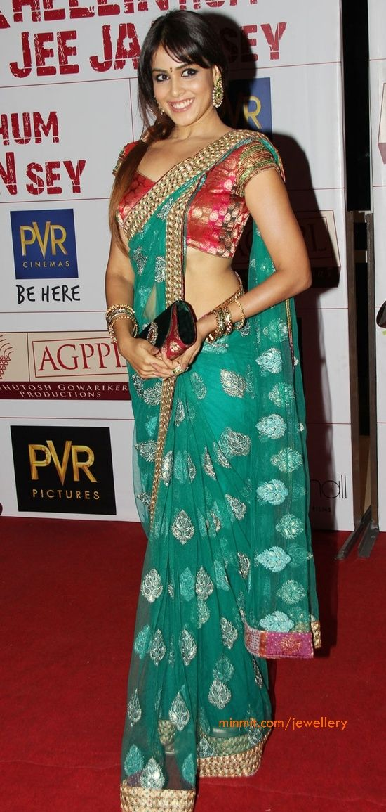 Genelia D'Souza Style Saree | For More collection of #Celebrity #Saree #Collection @ www.prafful.com