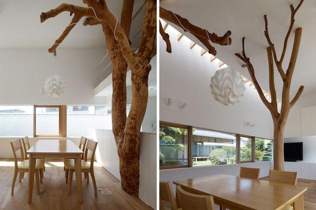 Oude bomen behouden en geïntegreerd in bijzonder woonhuis
