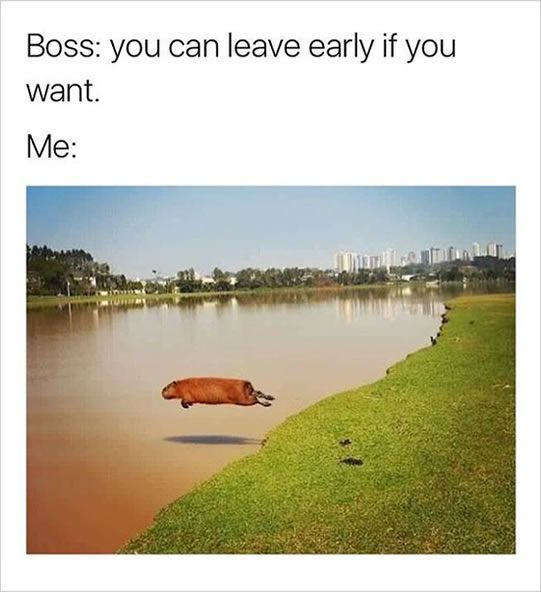 Work is an eventually of life whether you like it or not. You are probably so bored with your job that you start reading funny memes you probably shouldn't be reading at your job. Take a moment, check out these hilarious work memes, send to your co-workers and tell the boss you're busy.#1...
