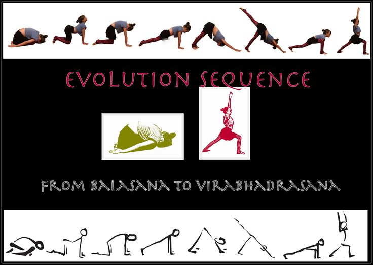 Evolution sequence