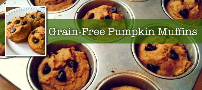 Grain-free pumpkin muffins from Balanced Bites. I am looking forward to making them again this fall.