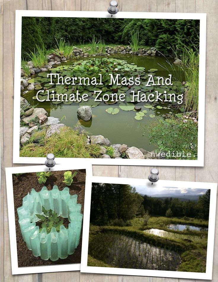 Ever wish you could shift your garden a few Zones south to successfully grow those more tender crops? If you understand thermal mass you can use science to trick your plants into thinking they live somewhere warmer than they do, and get a jumpstart on the gardening season.