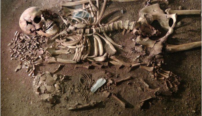 Skeleton of  woman with child from Bøgebakken