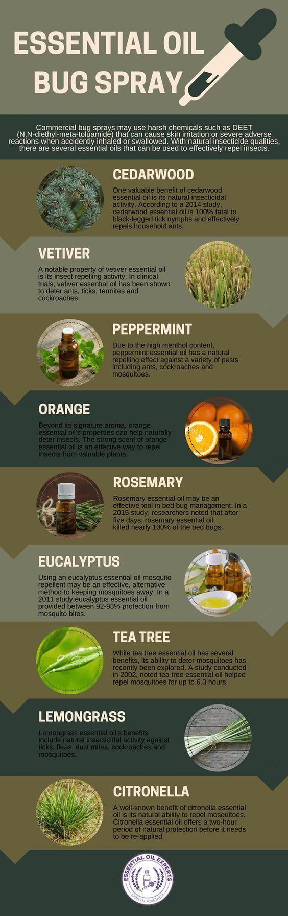 32 best Essential Oils images on Pinterest   Essential oils ...
