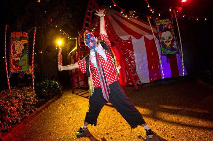 Crazy Carnival clown.