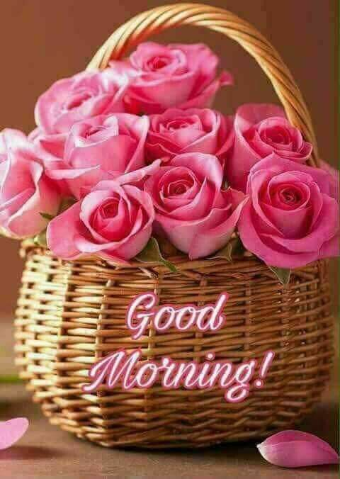 Good Morning Basket Of Roses Morning Good Morning Morning Quotes