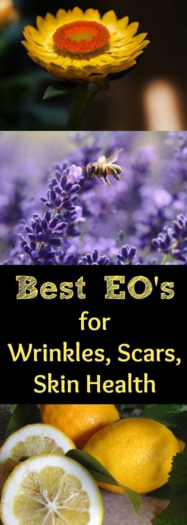 What are the best essential oils to use for wrinkles and anti-aging? Find out the BEST essential oils to use for aging skin and how to use them on your skin. Helichrysum, Frankincense, & Lavender are some of the best essential oils to use on wrinkled, aging, or scarred skin.